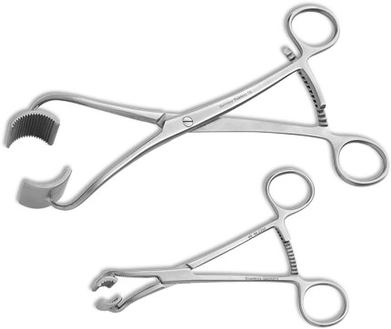 Bargo Bone Holding Clamp